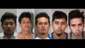 MS-13 members accused of stabbing 16-year-old 100 times, setting body on fire